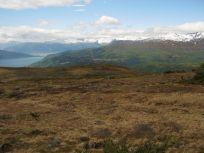 Bergsete opp Kvannskar-053