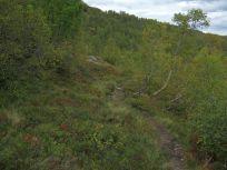 Kløvjavegen-Fjærlandsete-017