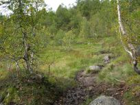 Kløvjavegen-Fjærlandsete-034