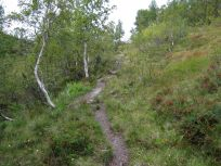Kløvjavegen-Fjærlandsete-040