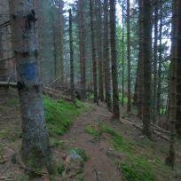 Kleppa-Hamrestølen-bak-004