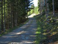 Kleppa-Høgehaug-005