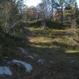 Kleppa-Høgehaug-022