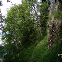 Opp over Kyrafossen-031