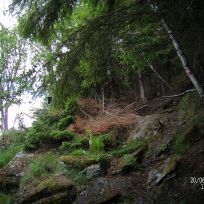 Opp over Kyrafossen-036