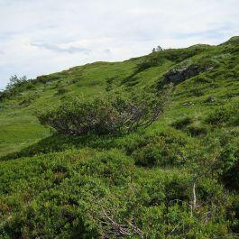 Bergsete via Hangsete-012