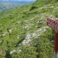 Bergsete via Hangsete-014