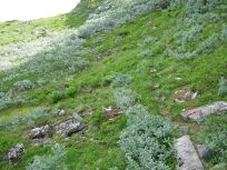 Bergsete via Hangsete-018