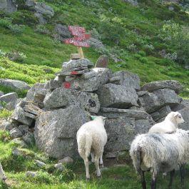 Bergsete via Hangsete-022