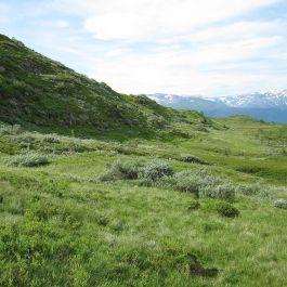 Bergsete via Hangsete-023