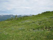Bergsete via Hangsete-027