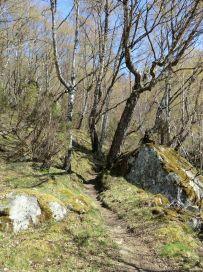 Bjørgahaug-fra-Sanden-037