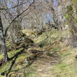 Bjørgahaug-fra-Sanden-043