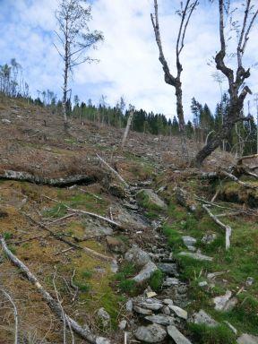 2018-Kvålen-Haoahaug-005