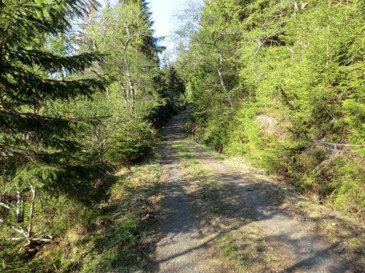 2018 Kvålen-traktorveg-Fadnastølen-028