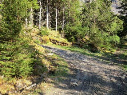 2018 Kvålen-traktorveg-Fadnastølen-033