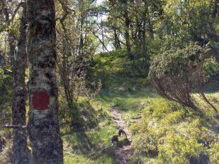 Hangsete-Våkeldahaug-020