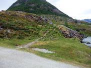 Austerdalsbreen-001
